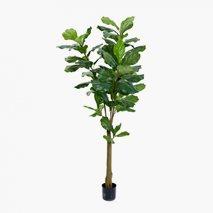Kunstig plante Fiolfikus Large
