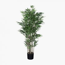 Konstväxt Bambu Large