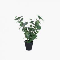 Kunstig plante Eucalyptus Small inkl. potte