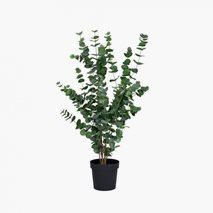 Kunstig plante Eucalyptus Large