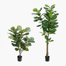 Kunstig plante Fiolfikus