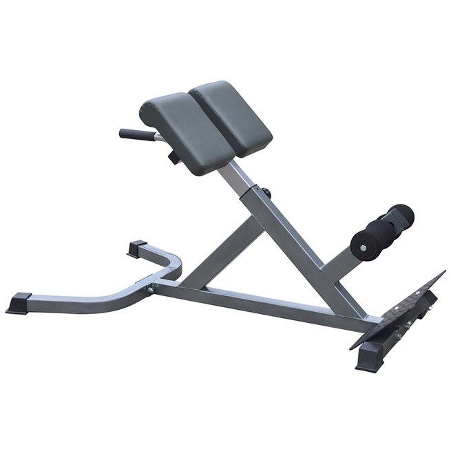 Master Fitness Master Back Trainer Silver I