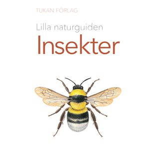 Lilla naturguiden - Insekter