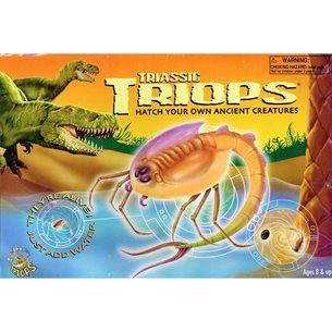 Triops - torkade ägg
