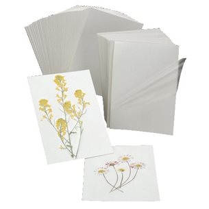 Växtkort - 50st, 10 x 14 cm