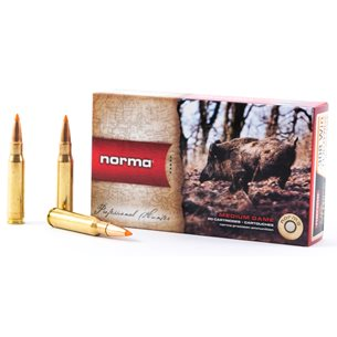 Norma 308 Win Tipstrike 11g/170gr, 20st/ask