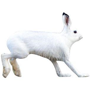 Targets Hare naturlig storlek
