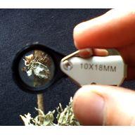 Botaniklupp 10x, 18 mm