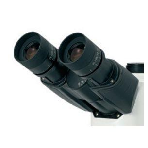 Okular, mikrometer, 10x, 22mm, widefield, för Oxion-serien