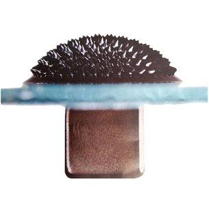 Ferrofluid - 10 ml