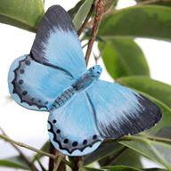 Fjäril - Tosteblåvinge