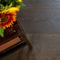 Trægulv Nordic Floor Eg Grand Coffee 1-Stavs