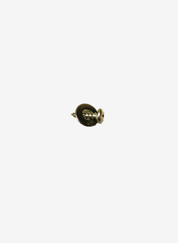 Kona One screw for daggerboard plate