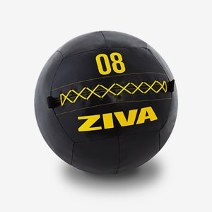 Ziva Wall Ball