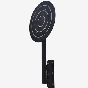 Master Fitness Crossfit rig Wall Ball Target