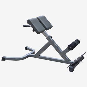 Master Fitness Träningsbänk Back Trainer Silver I