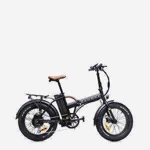 Rawbike 4X Matte Black