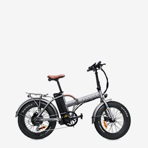 Rawbike 4X Grey