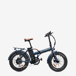 Rawbike 4X Ski TeamEdition