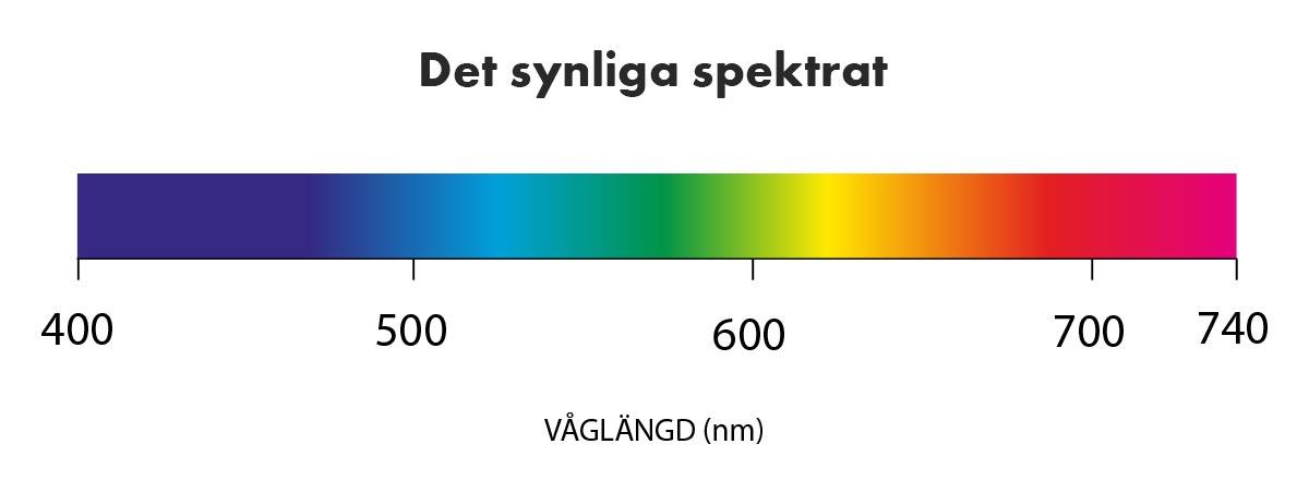 synligt ljus spektrum
