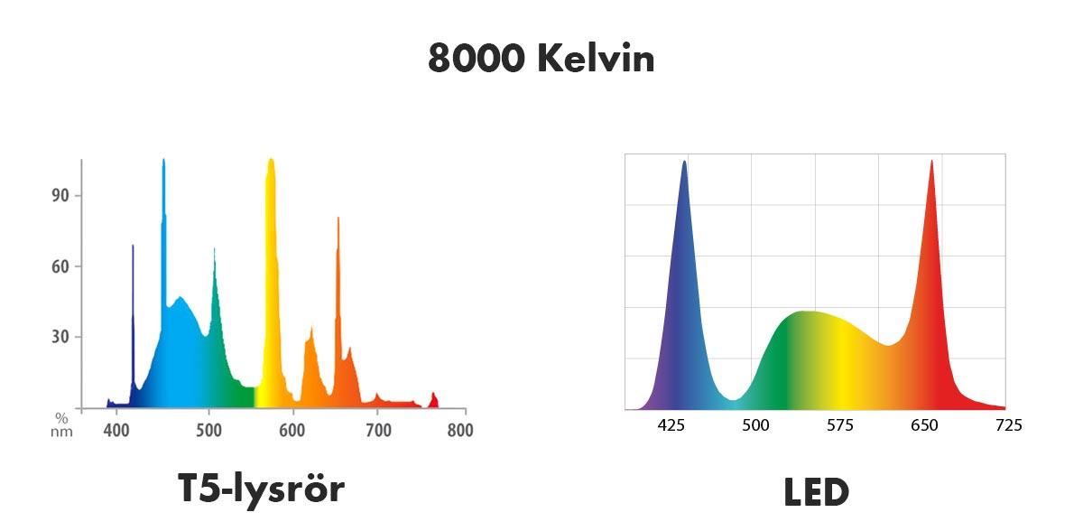 ljusspektrum kelvin