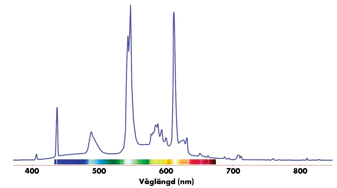 spektrum lysrör