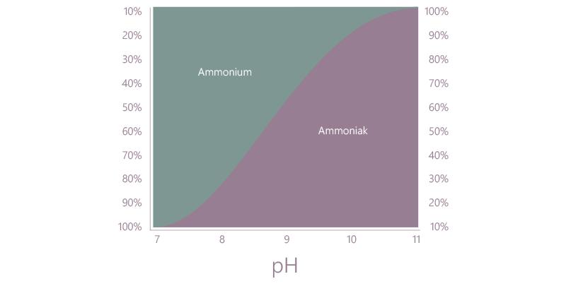 ammoniak ph