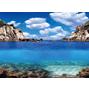 Aqua Nova Bakgrund  100x50 cm plant/ocean