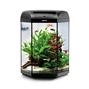 Aquael  Hexa Set 60 - 6-kantigt akvarium - Startpaket