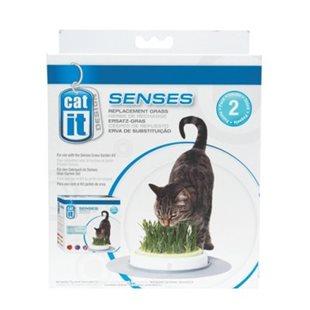 Catit Senses - Kattgräs Refill