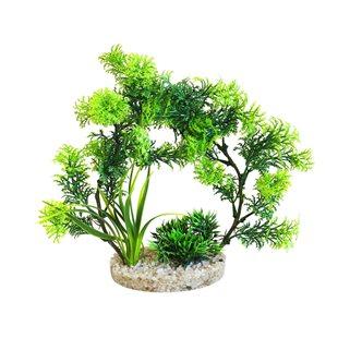 Plastväxt - Cirkelväxt 21 cm