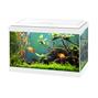 Ciano - Akvarium - Aqua 20 LED - Vitt - 17 liter