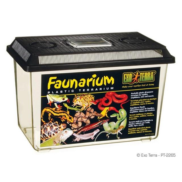 Exo Terra Faunarium - Large - 37x22x25 cm