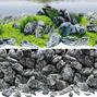 Juwel Poster 4 Aquascape / Stone - S - 60x30 cm