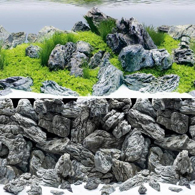 Juwel Poster 4 Aquascape / Stone - L - 100x50 cm