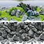 Juwel Poster 4 Aquascape / Stone - XL - 150x60 cm