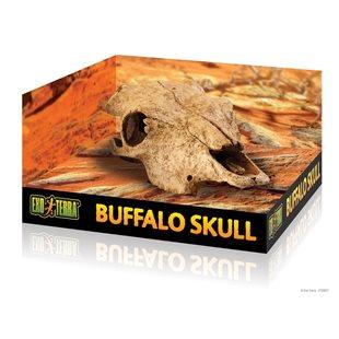 Exo Terra Buffel Kranium