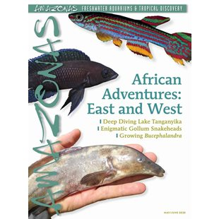 Amazonas Vol 9 No 3 - African Adventure: East & West