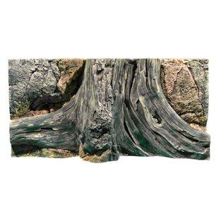 Back to Nature - Amazonas - 80x40 cm