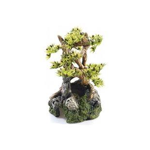 Bonsai Träd på Sten - 19 cm