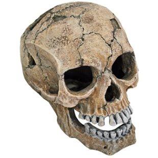 Dödskalle Spräckt - 20 cm