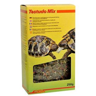 Lucky Reptile - Testudo Mix - 250 g