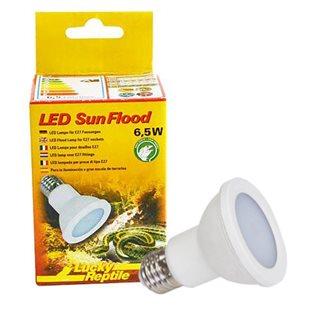 Lucky Reptile LED Sun Flood - 6,5 W