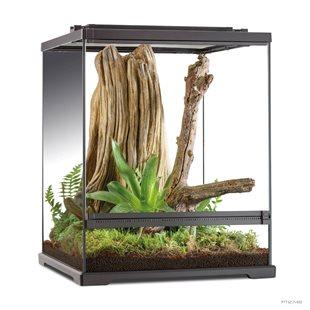 Exo Terra Tree Frog Terrarium - 45x45x60 cm