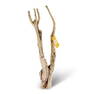 HabiStat Tea Tree Branch - ca. 55-60 cm
