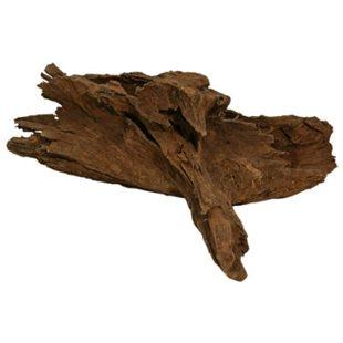 Mangroverot - Medium - 30-35 cm