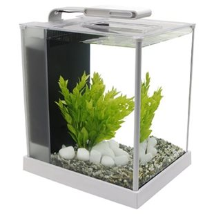 Fluval Spec 3 - 10L - LED - Vit