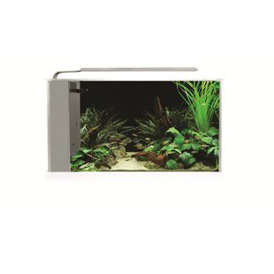 Fluval Spec 5 - 19L - LED - Vit