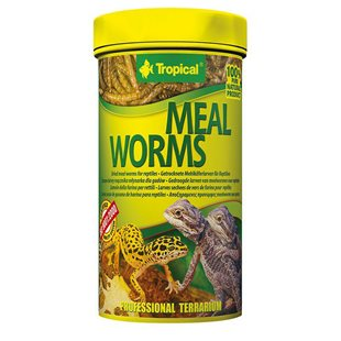 Tropical - Mealworms - 250 ml / 30 g