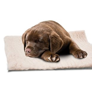 Fäll - Dry Bed - 100x70 - Beige